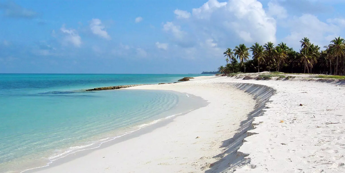Incredible andaman island tour package