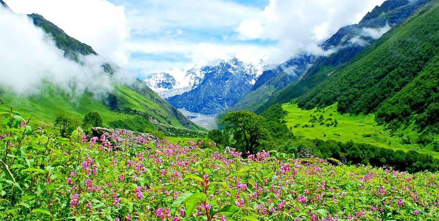 valley of flowers trek tour package